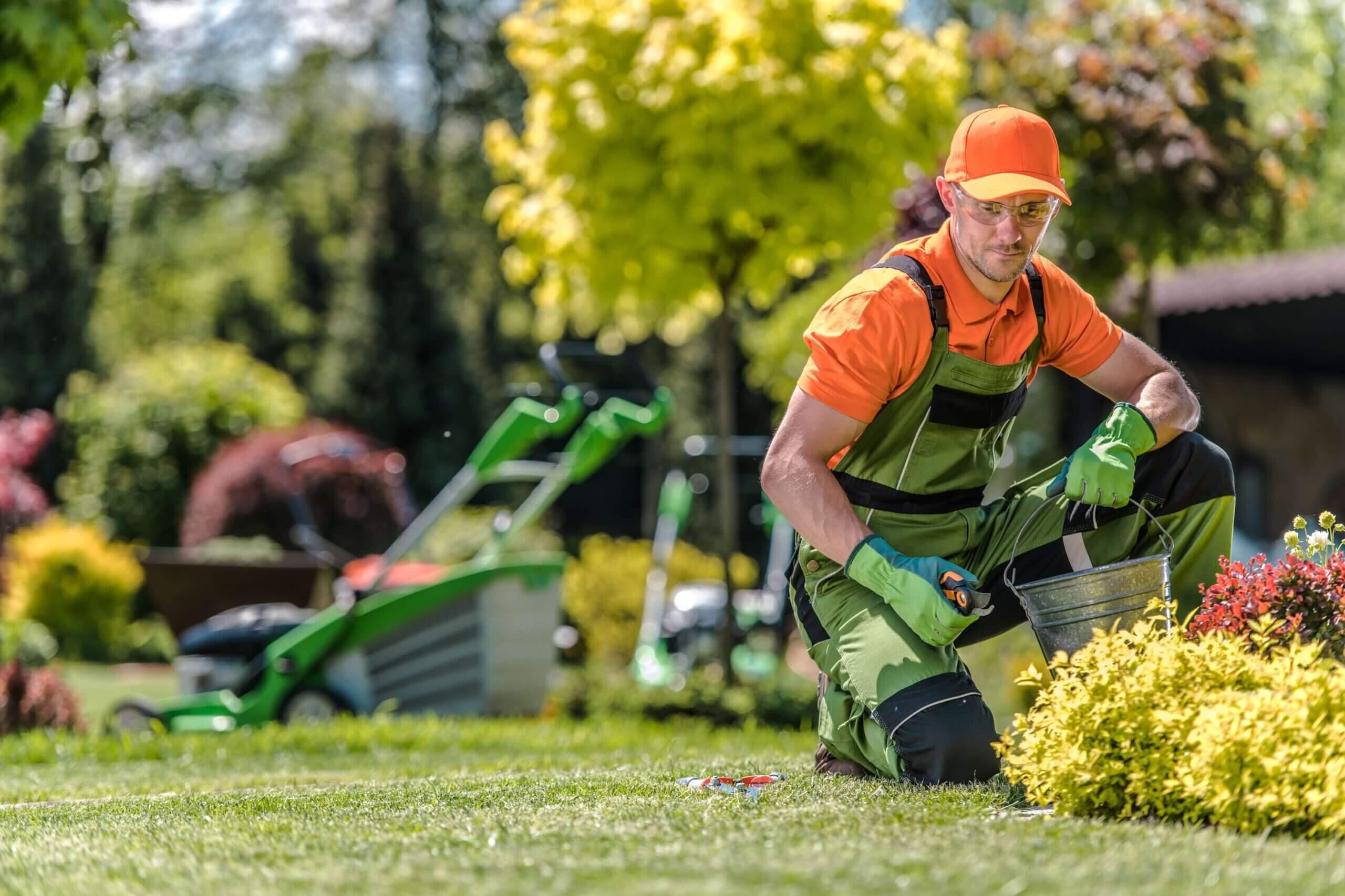 secheli Gartengestaltung Wien Gartenpflege  scaled