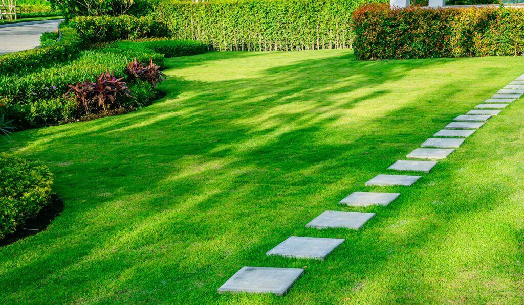 Gartengestaltung Wien Rollrasen scaled