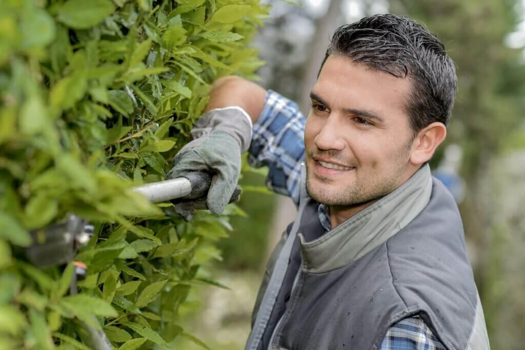 Gartenrenovierungsunternehmen scaled