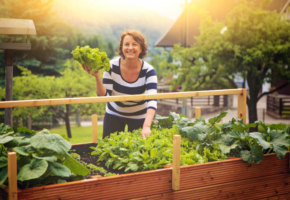 Garten service Hochbeet bauen