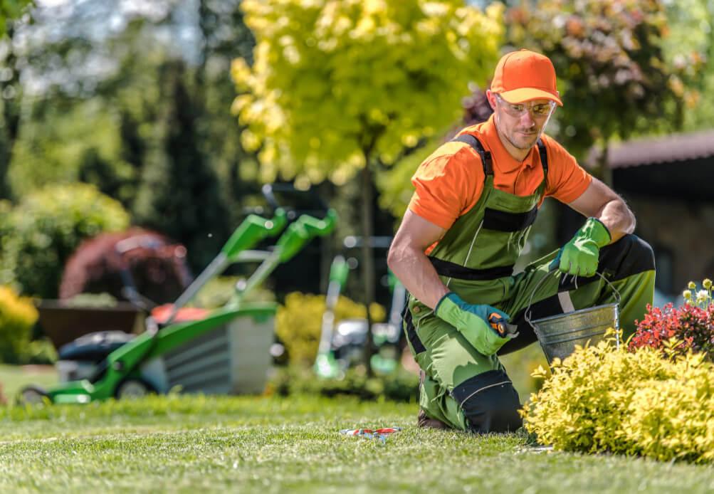 GartengestaltungGartenpflege