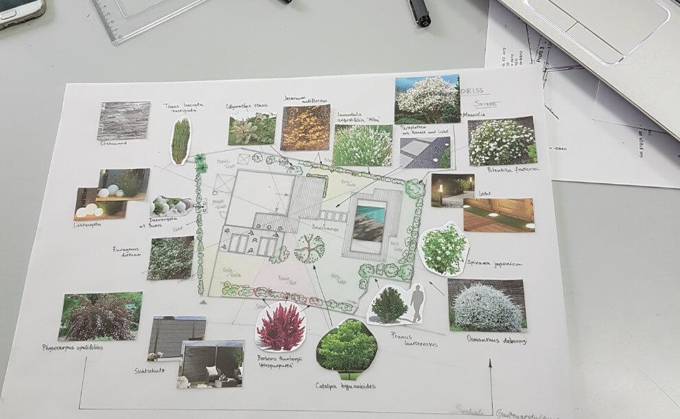 pflanze planung