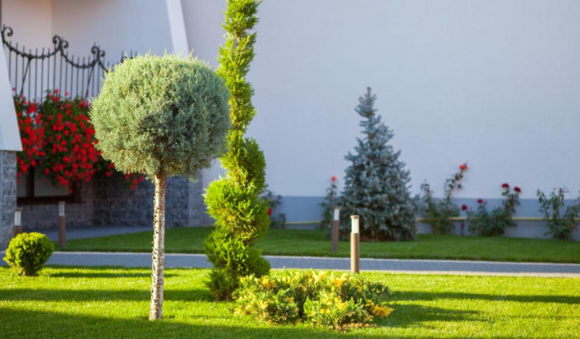 Gartengestaltung Wien Umgebung